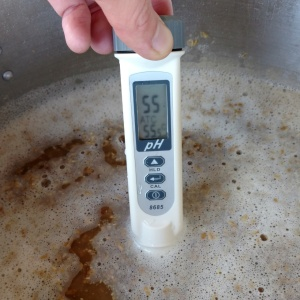 Punkish IPA Mash pH