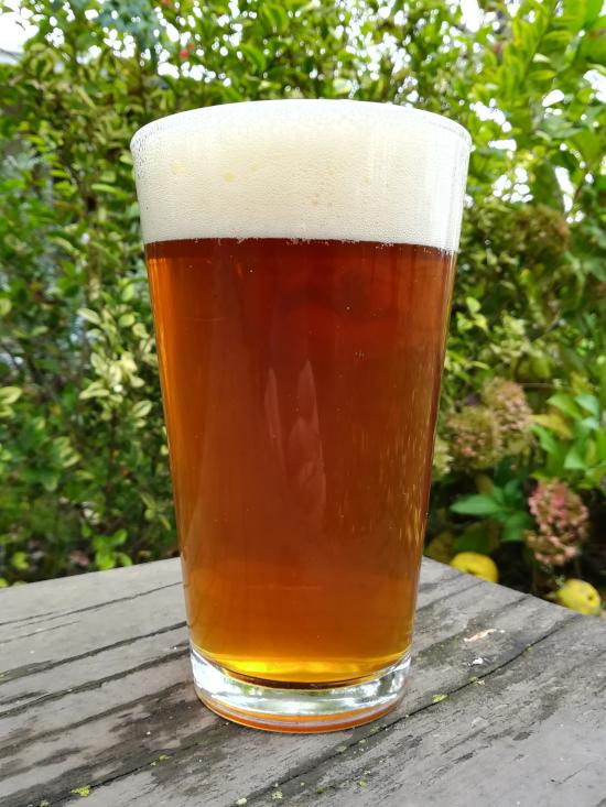 Locale American Pale Ale