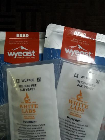 Liquid Yeasts